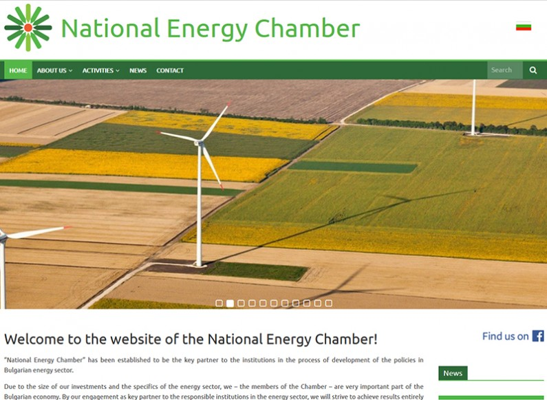 Creating a website for National Energy Chamber