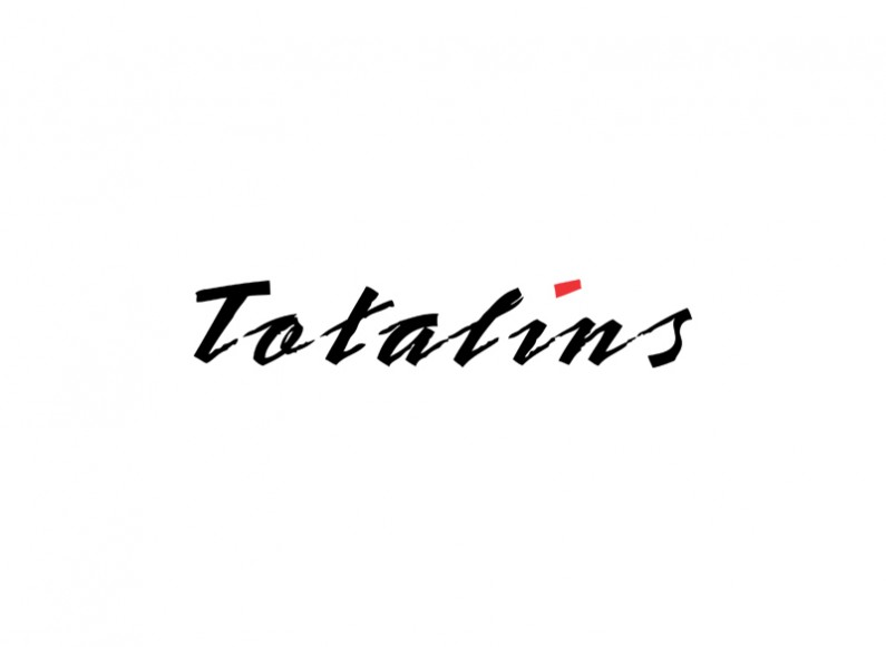 Redesign of the logo of Totalins