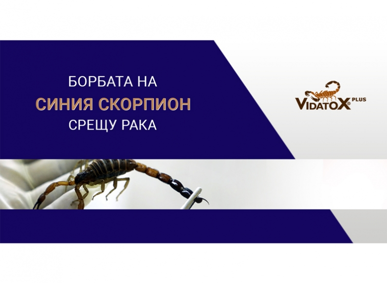Support of the corporate profile of Vidatox Bulgaria in Facebook