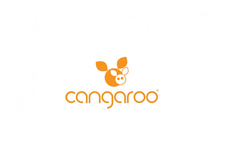 Creation of a comprehensive marketing strategy for brand Cangaroo