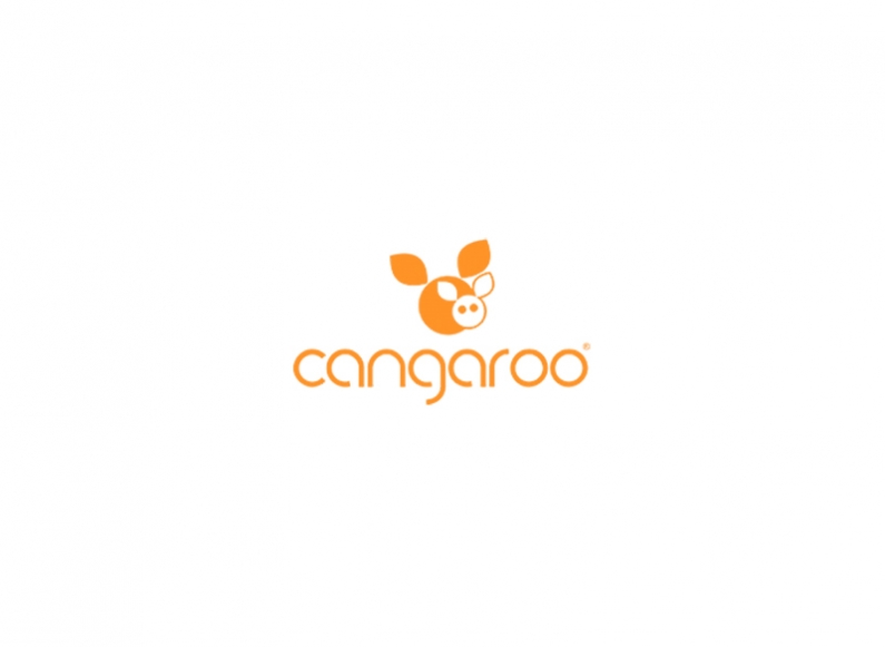 Creation of a comprehensive marketing strategy for Cangaroo brand for online presence and corporate branding
