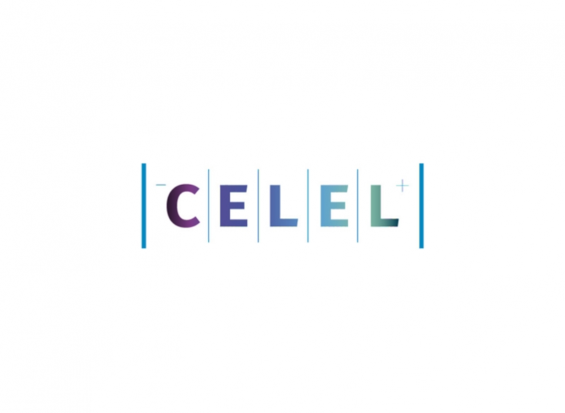 Consultation with the team of Celel and recommendations for online presence