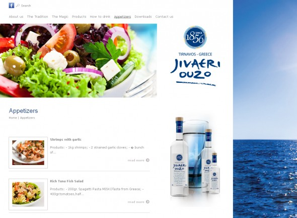 Product website for the brand Jivaeri 3